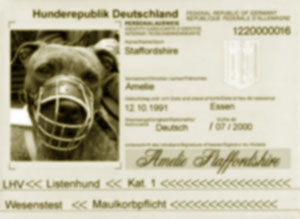 Listehund Passport